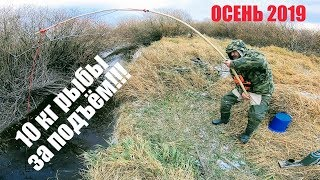 Do-it-yourself fishing spider fishing Fishing 2019 Fishing for crucian carp 10kg of fish for 1 time