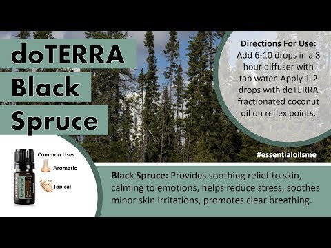 fantastic-doterra-black-spruce-essential-oil-benefits-and-uses