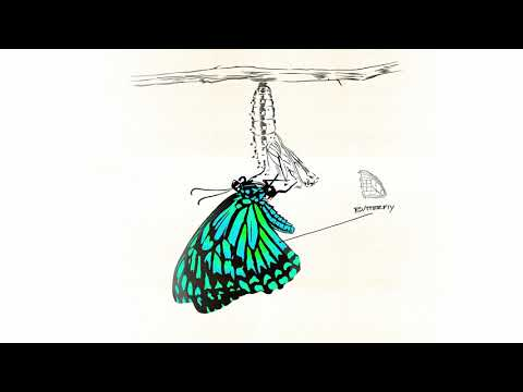 Kehlani - Butterfly (Official Audio)