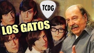 Así nacieron Los Gatos, la primera banda de ROCK en español de la historia | por Litto Nebbia