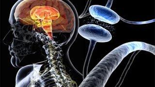 एम्स के डॉ. अचल श्रीवास्तव से जानिए नर्वस सिस्टम के बारे में सब कुछ