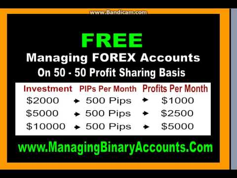 Forex Trading Investment in Russian Federation, Forex Trading Software