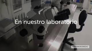 Fecundación in Vitro - ICSI - Reproducción asistida