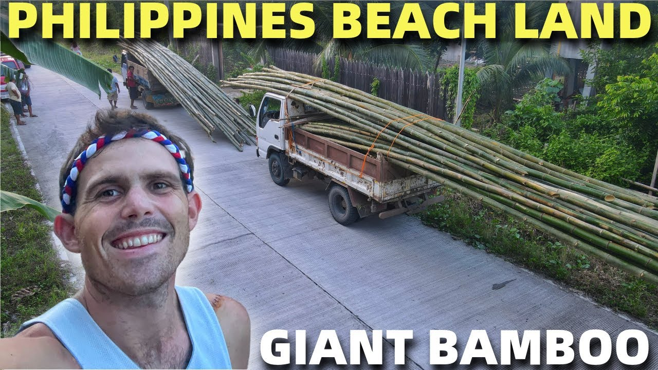 PHILIPPINES GIANT BAMBOO DELIVERY - Davao Beach Land Building (WILD PILOT!)