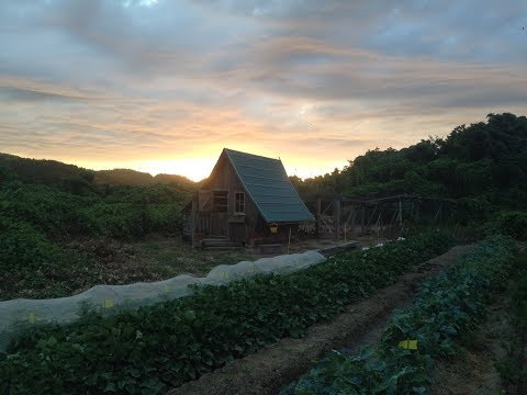 Organic Farm & Produce in Japan!