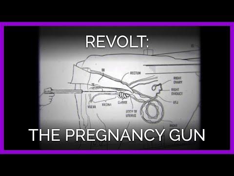 The Pregnancy Gun | REVOLT!