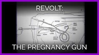 the-pregnancy-gun-revolt