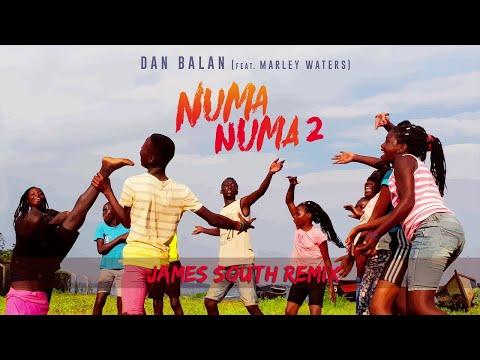 Dan Balan - Numa Numa 2 (feat. Marley Waters) | James South Remix