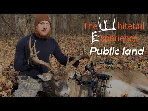 Ohio Public Land Deer Hunting- Giant