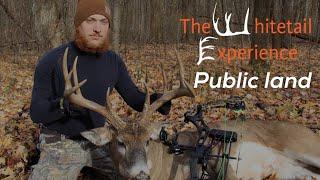 Bowhunting public land whitetails- public land bowhunting 2017