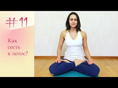 YogaFAQ#11: Как сесть в Позу Лотоса?