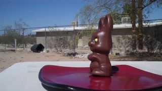 Red Ryder BB Gun VS Chocolate Easter Bunny