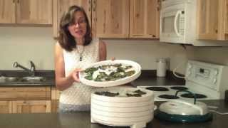Kale Crisps Recipe - Paleo, Vegan And Cheesy Versions!
