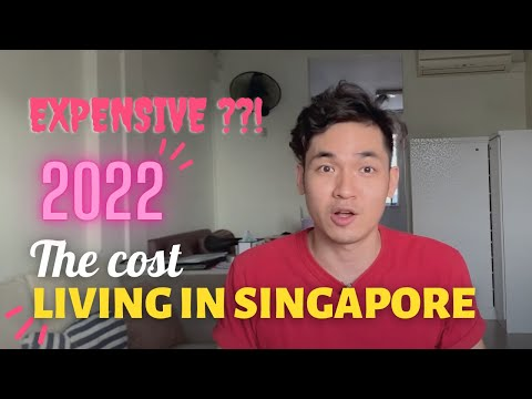 AVERAGE COST OF LIVING IN SINGAPORE  2020 - HOW MUCH DO I SPEND MONTHLY?