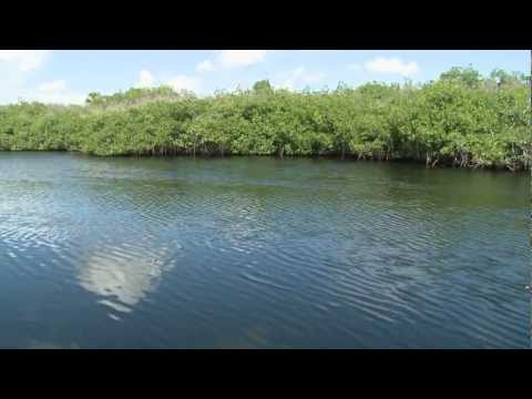 G3 Sportsman TV - Everglades Snook