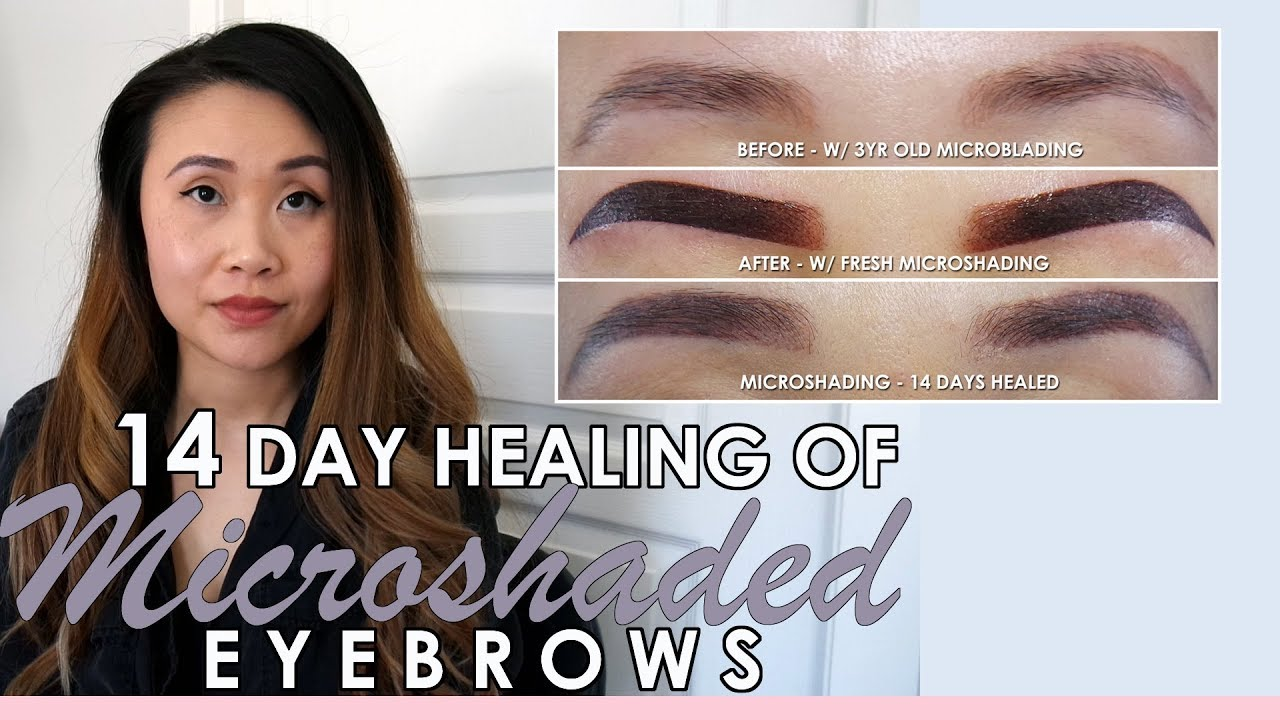 MICROSHADED EYEBROWS 2019 | 14 DAY HEALING IN PICTURES | MICROSHADING VS  MICROBLADING EYEBROWS