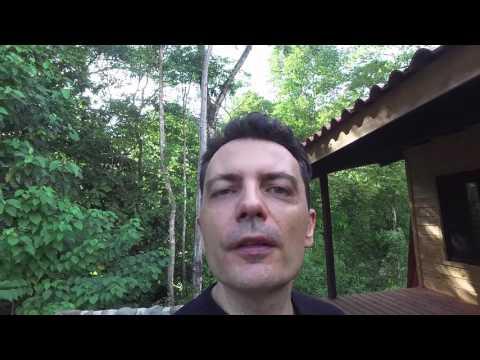 Je construis 6 maisons au Costa Rica - partie 5 - business