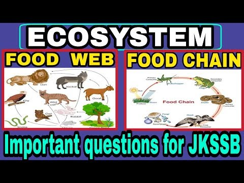 Ecosystem food chain and food web | Important question for | UPSC JKSSB | jk police SI exam