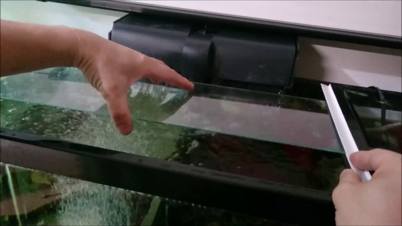 Diy Glass Top For 55 Gallon Aquarium