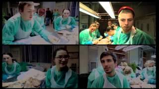Medizinstudium TV: Vorsemester Medizin