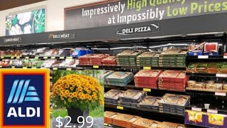 ALDI 🌼 GROCERY SHOP WITH ME 🌼 NEW ITEMS 🌼 MUMS $2.99 🌼