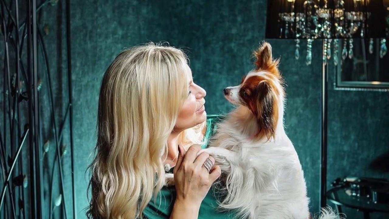 Главная собака питомника