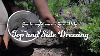 How to Side and Top Dress Garden with Compost