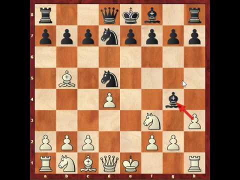 Nf6 Scandinavian Part 5 3.Nf3