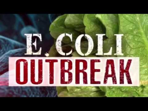 Romaine lettuce outbreak worsens 98 people sick  people sick in 22 states