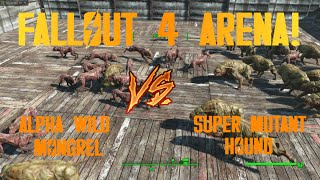 Alpha Wild Mongrel vs. Super Mutant Hound FALLOUT 4 ARENA NPC BATTLES