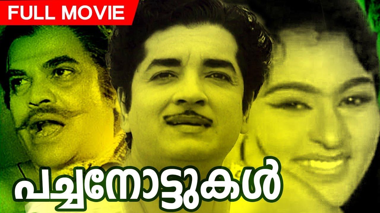 Malayalam Full Movie | Pachanottukal | Old Movie | Ft Prem Nazir, Vijayasree