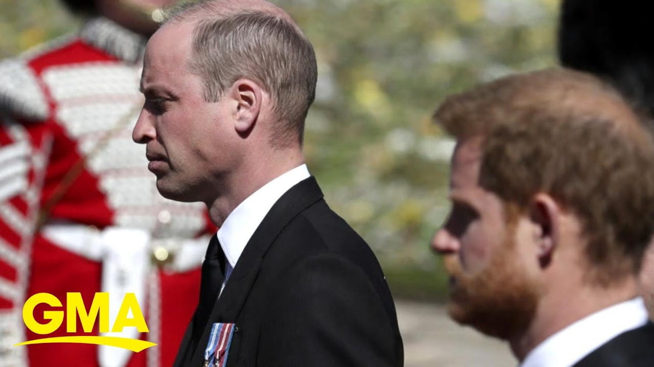 Prince William And Prince Harry Reunited To Unveil A Statue Of ...