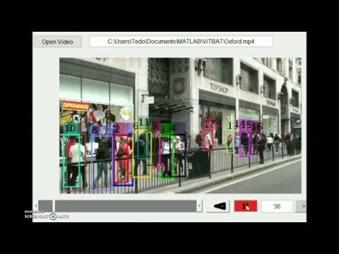 ViTBAT - Video Tracking and Behavior Annotation Tool
