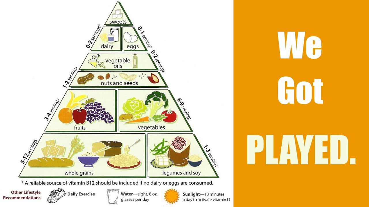 Is The Food Pyramid A Lie Youtube