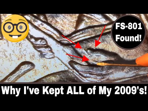 2009 Lincoln Penny Variety Hunt - Extra Finger Error Found!