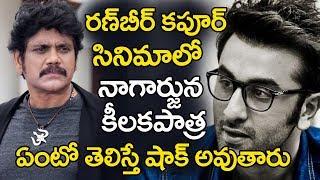 Nagarjuna Main Role In Ranbir Kapoor Movie   Nagarjuna In Brahmastra Movie   YOYO Cine Talkies