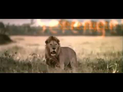 Tanzania: Land of Paradise