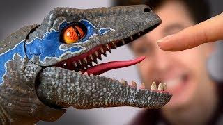 BITTEN by BLUE!!! - Alpha Raptor Blue Training Unboxing