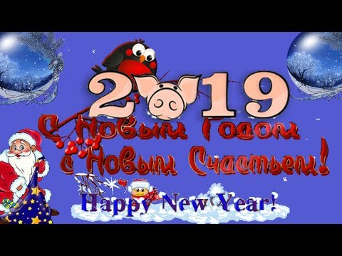 Короткие поздравления с Новым годом 2019 пожелание в новый год свиньи - Видео приколы ржачные до слез