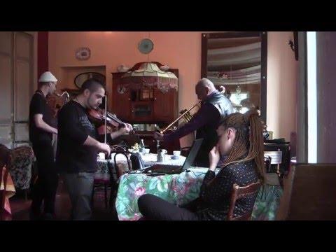 The Violin purpur