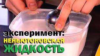 Галилео  Эксперимент  Неньютоновская жидкость