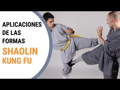 Shaolin kung fu self defense - Budo Masters 2016 - Shi Xing Jing