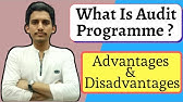 advantages and disadvantages of audit programme