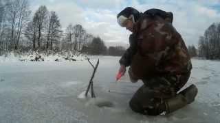 Зимняя рыбалка Ловля щуки на жерлицу,первый лёд. Щука,окунь,плотва.