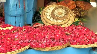 Flowers and religious offerings being sold outside Ajmer Sharif Dargah, Rajasthan