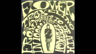Flower Travellin Band - How Many More Times