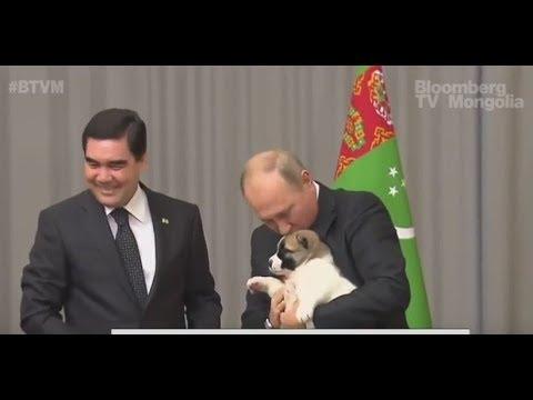 """В.Путины төрсөн өдрийн бэлэг """"Верни"""""""