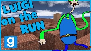 LUIGI ON THE RUN
