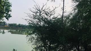 A short trip to  muzzafarpur