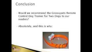 Groovypets Dog Trainer Video Review Article | Buy Dog Collars At Petproductsonline.info | Buy Usa!